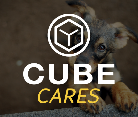 Cube cares